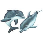 Playful Baby Dolphins Peel and Stick Decals