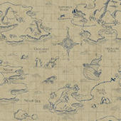Disney Brown Pirate Map Sidewall Wall Paper
