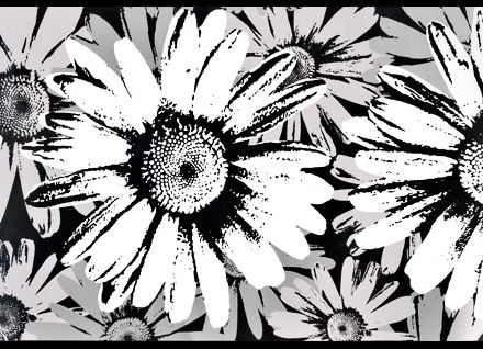 Black And White Metallic Floral Wall Border - Wallpaper for walls black and white