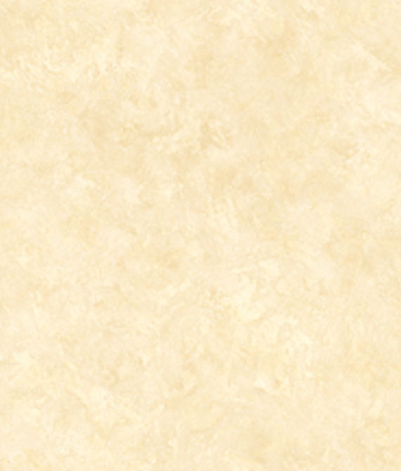 Ivory Shell Texture Wallpaper
