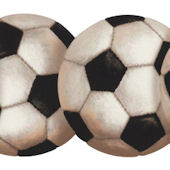 Soccer Ball Wallpaper Border